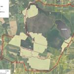 Amalvos pelkės tvarkymo priemonių brėžinys / Principal scheme of management measures in Amalva mire